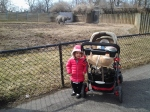 One of the first nice days, so we went to the zoo.